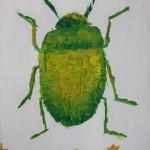 Jung's Beetle
